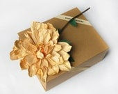 Single Dahlia in Gift Box