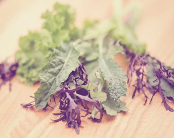 Food Photography - Kitchen Art - Dining Room Decor - Lettuce Photograph - Food - Fine Art Photography Print - Green Purple Kitchen Decor