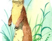ACEO Limited Edition 4/25- Long tailed weasel, Art print of an ORIGINAL ACEO watercolor painting, Gift for animal lovers, Housewarming gift