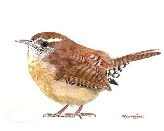 ACEO Limited Edition 5/10 - A wren