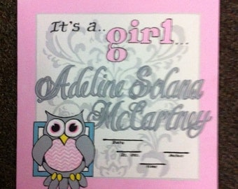 Birth Announcement Hospital Sign , It's a Girl, Owl, Wall Hanging