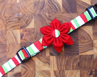 Christmas Dog collar and dog flower accessory combo in Red and Green