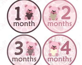 Girl Monthly Baby Stickers, 1 to 12 Months, Monthly Bodysuit Stickers, Baby Age Stickers, Pink Bears with Hearts  (036-2),