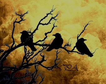 Crows Birds on Branch Yellow Stormy Sky Home Decor Wall Art Matted Picture A522