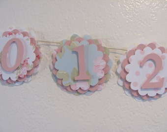 first year banner, 12 month banner, photo banner, first 12 month banner, first birthday, birthday decorations