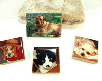 2 Personalized Pet Photo Magnet Fridge Locker Gift Magnet Pet Friend Custom HissyFits Magnet