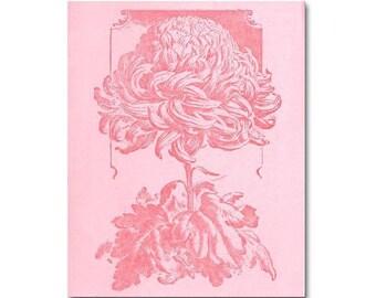 Flowers Shabby Nursery Decor, Girls Wall Art, Flower Nursery Print 8x10 pink coral, Floral Girl Nursery Wall Art, Kids Decor, Kids Wall Art