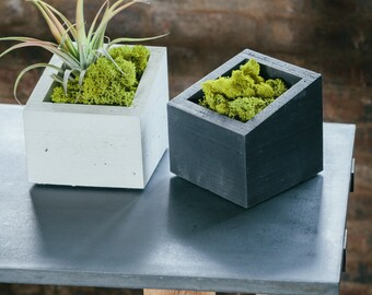 SUMMER SALE!! ANGL Modern Concrete Planter