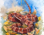 Beautiful Reptile Snake, original watercolour painting, Agkistrodon Bilineatus