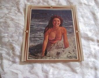 70s pin up girl poster, bikini girl, summer fun poster