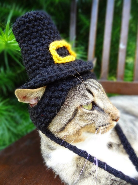 Pilgrim Cat Hat Pilgrim Cat Dog Costume The Pilgrim's
