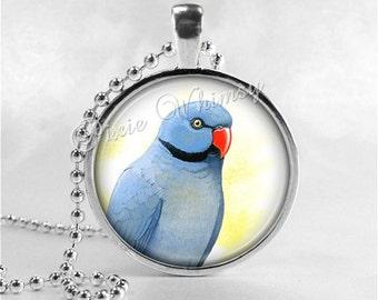 INDIAN RINGNECK PARROT Necklace, Parrot Jewelry, Parrot Necklace, Parrot Charm, Bird Necklace, Glass Photo Art Pendant Necklace