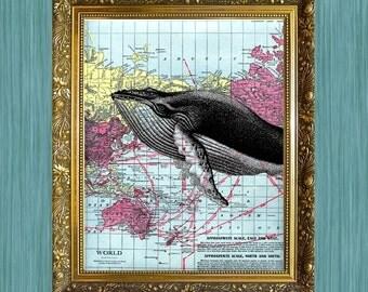 Whale on Map Print  8 x 10 HHP Original Print Sea Life Art Print Seaside Art Print Sealife Art Print Natural History Print