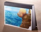 Illustrated Postcard Book - 40 pages