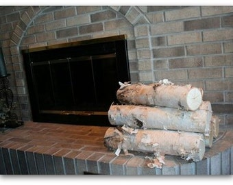 Large Fireplace WHITE BIRCH LOG Set