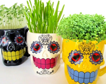 DIY Microgreens Indoor Garden Kit in Sugar Skull Mug Planters - Organic Seeds and Soil - Day of the Dead Ceramics Yellow Black or White