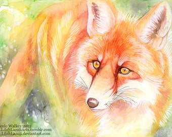 Colorful Red Fox - Lustre Photo Print