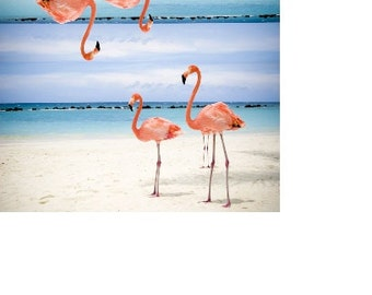Flamingo Checkbook Cover Flamingo Birds Beach