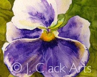 Print of Purple Pansy