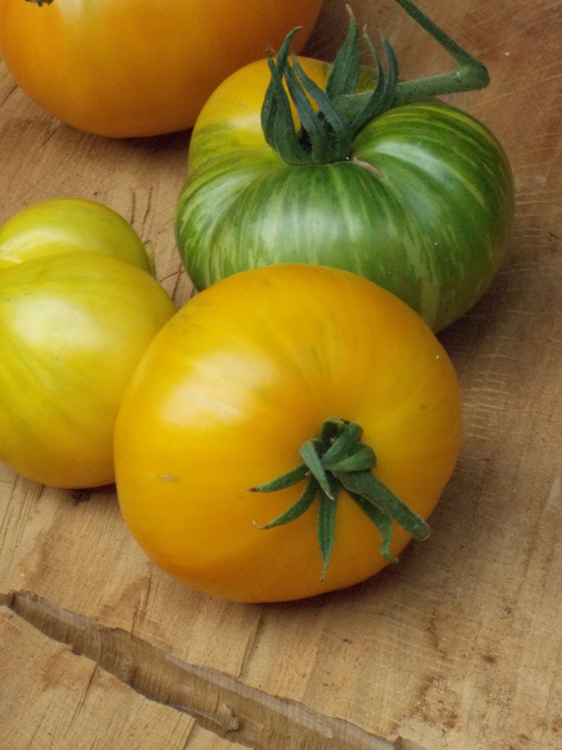 Big Yellow Zebra Tomato Seeds heirloom tomato organic seeds