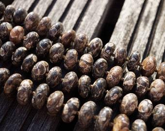Turritella agate 10.5-12.5mm rondelle beads (ETB00338)