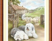 OLD ENGLISH SHEEPDOG limited edition fine art dog print 'Bobtail's Droving'