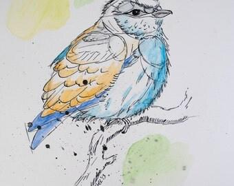 Blue and Yellow Bird, digital copy