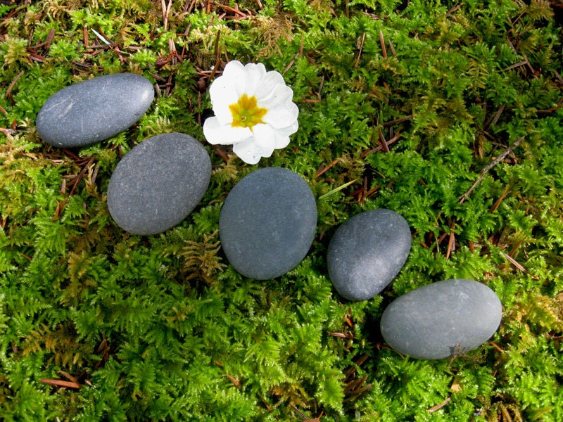 5 smooth flat river rocks for miniature garden stepping stones for Smooth stones for landscaping