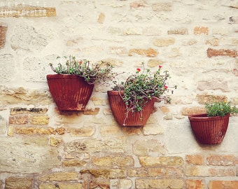 FLOWER POTS photography print, italian flower pots decoration, 8x12