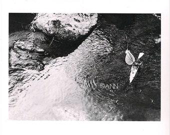 Vogue à l'âme-Photography - Art Print - 13x20cm size