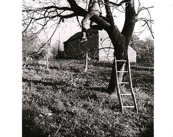 The tree and scale-photography - Art Print - 13x20cm size