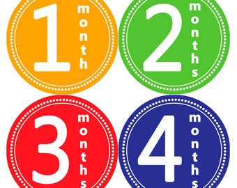 Monthly Stickers Monthly Baby Stickers Baby Month Milestone Stickers Baby Month Stickers Month to Month Bodysuit Stickers Shower Gift 065