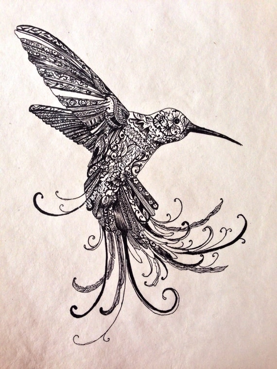 Hummingbird Drawings Step By Step: Items Similar To Hummingbird Drawing On Etsy