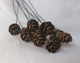 Bitty Pine Cone Picks