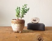 Tiny legged planter in rustic freckled tan and matte white