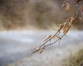 Still life photography, autumn leafs, unique amateur posters, fall print, art decor, wall decor, fine art photography
