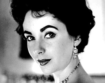"Counted Cross Stitch Pattern ""Liz Taylor"""