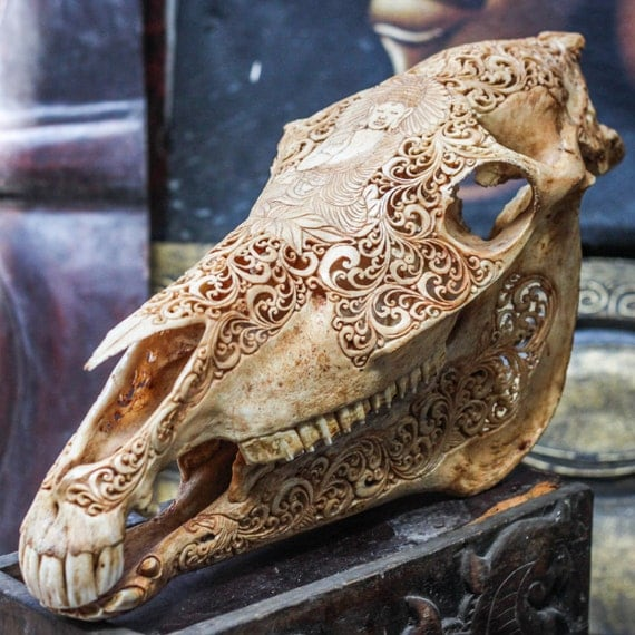 Hand carved buddha horse skull real mule animal bone