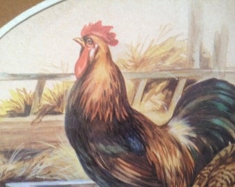 framed matted print of rooster and hen with chicks in barn
