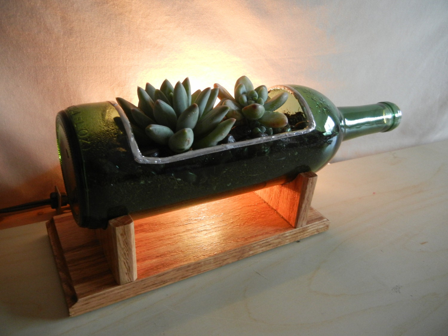 Wine Bottle Glass Planter Kit Diy