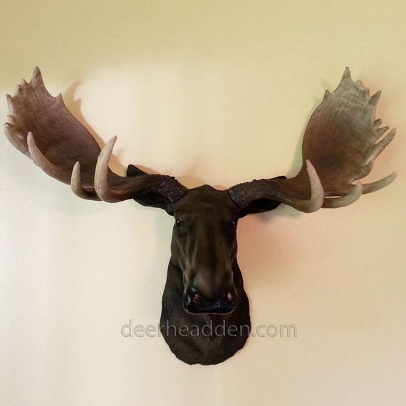 Moose resin head life like animal wall mount wall decor - Fake moose head mount ...