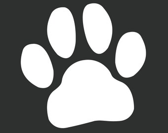 how to download windows from paws