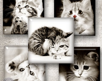 Kittens in Sepia - 1x1 inch squares - Digital Collage Sheet CG-616S for Jewelry, Crafts
