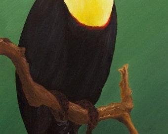 """Toucan Oil Painting, Bird Painting, Toucan, Bird, Original Oil Painting - """"Toucan"""" (12"""" x 24"""")"""