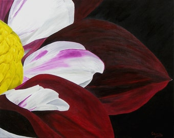 """Dahlia Oil Painting, Flower Painting, Close Up, Original Oil Painting, Flower, - """"Dahlia - On Black"""" (20"""" x 24"""")"""