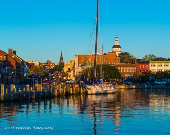 Annapolis Harbor by the early morning's light.