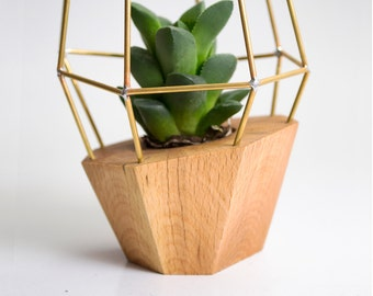 Elegant Faceted Wooden Planter - Geometric Wood Brass Gem - for Succulent, Cactus and Air plants. Handmade in EU
