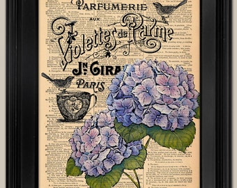 Hydrangias on French Perfume Lable Print . Upcycled vintage book page art print. Print on book page. Mother's Day Gift.