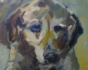 Dog day afternoon, small original oil painting, Jean Delaney, size 6 x 6 on panel