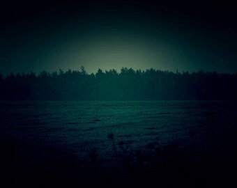 Dark Photography, Nature Photography, Wall Art Print, Landscape Photography, Emerald Green, Dark Teal Photo